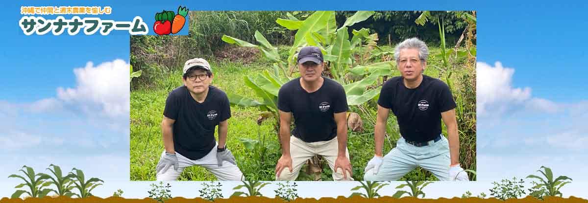 沖縄で週末農業を楽しみ、半農生活を目指す農業ブログのサンナナファーム